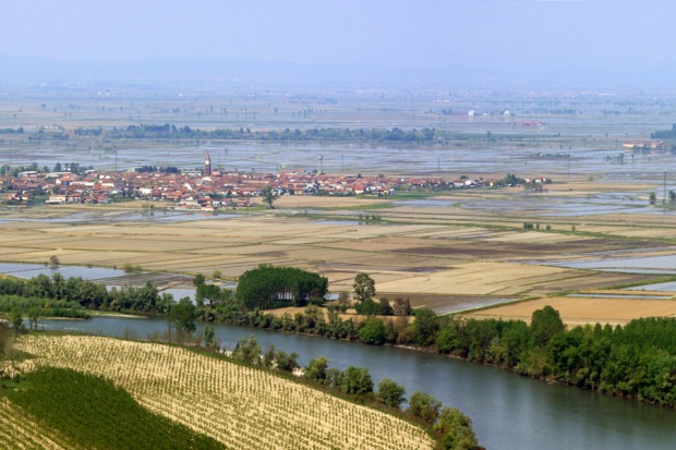 Rice fields in the province of Vercelli, eastern Piedmont.